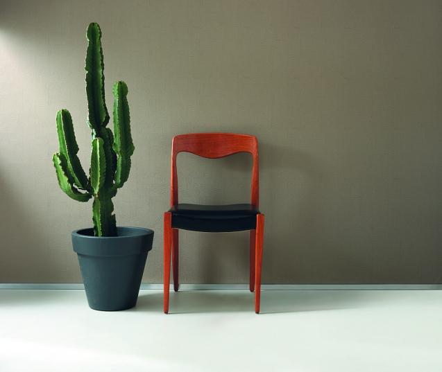 ambiance cactus 027